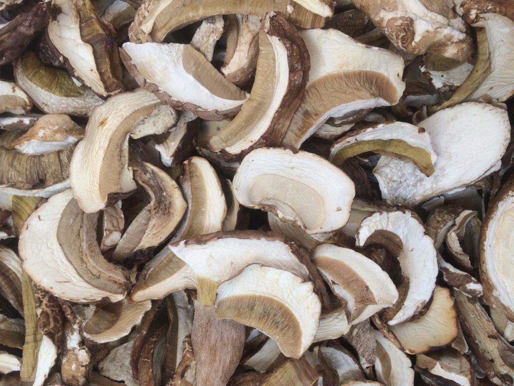 белые грибы как сушить с картинками церемония открытия финального
