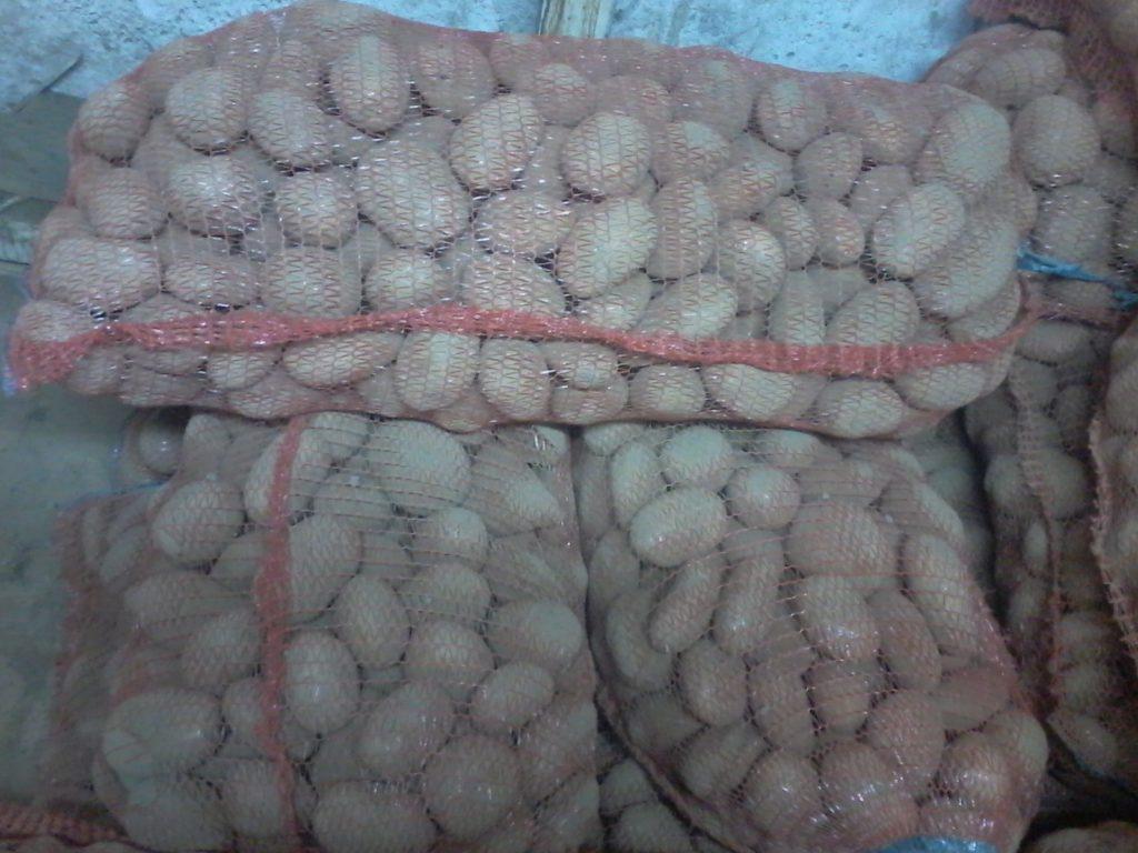 Доска объявлений москва по продажи картофеля оптом подать бесплатное объявление в балаково